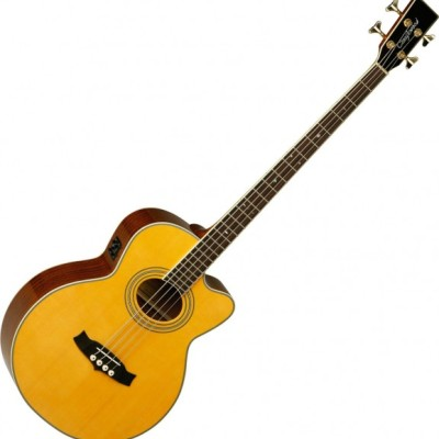 NUOVO - Tanglewood  TW 55 A...
